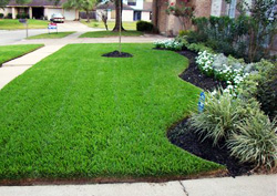 Maryland Lawn Care